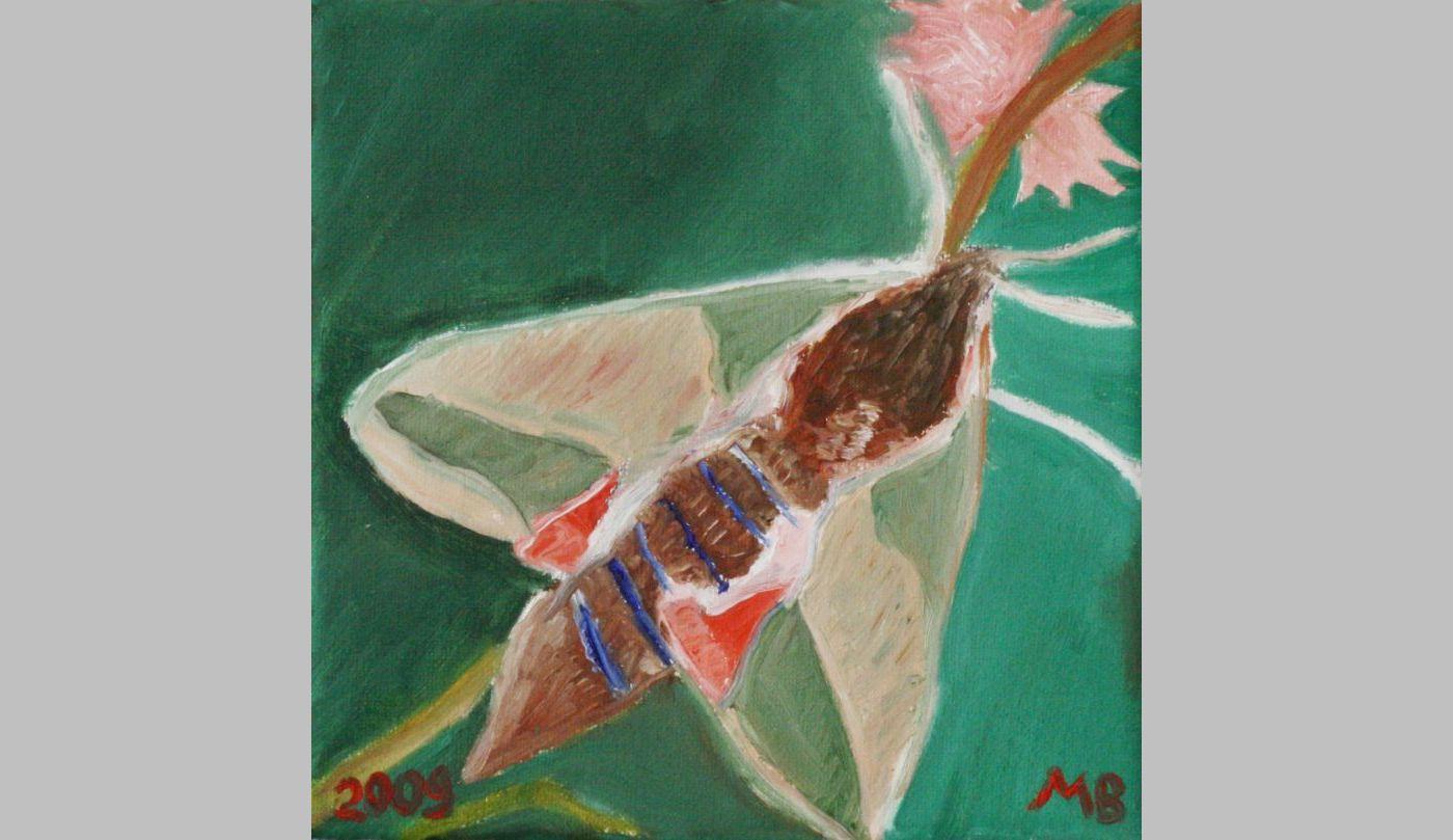 Falter unbetitelt (2009, 15 x 15 cm)