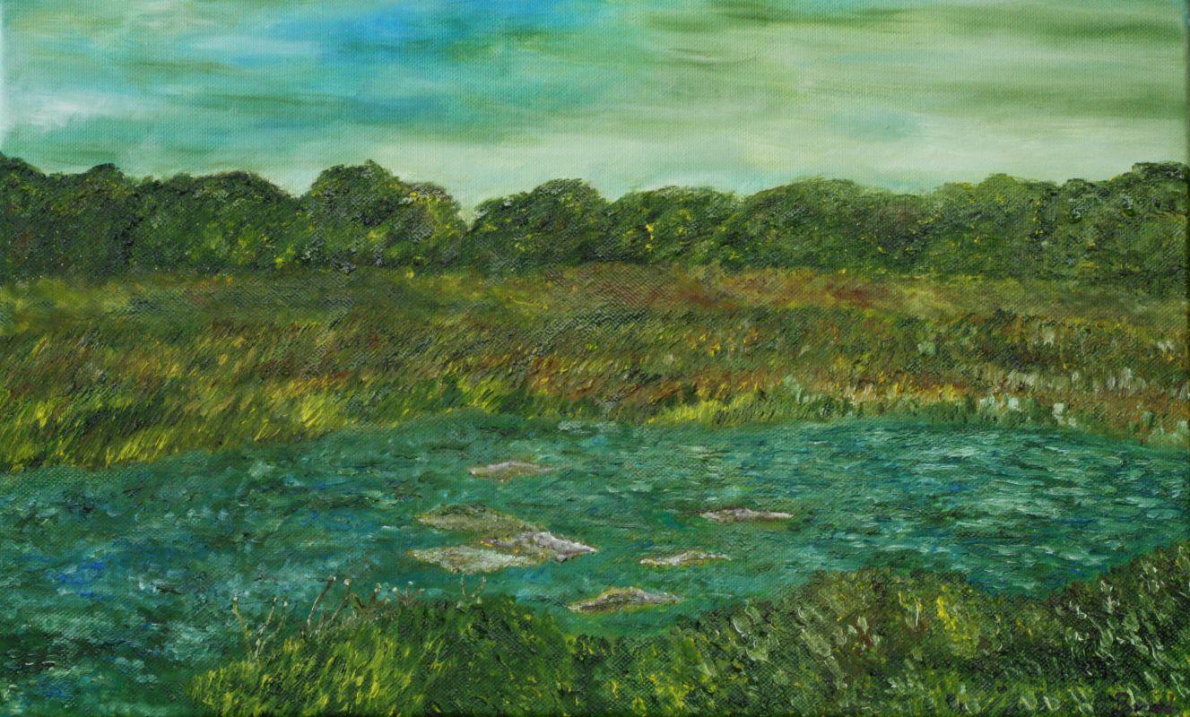 Moorlandschaft (2011, 30 x 40 cm)